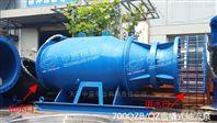 中藍泵業斜拉式潛水軸流泵