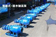 大流量臥式潛水軸流泵的使用