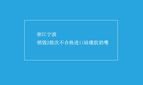 浙江宁波销毁2批次不合格进口硅橡胶奶嘴
