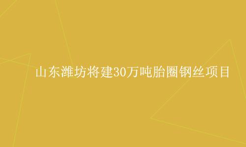 山东潍坊将建30万吨胎圈钢丝项目